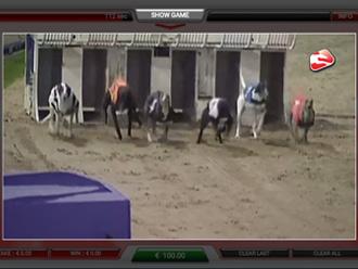 Racing Dogs Paytable