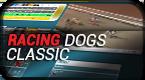Racing Dogs Classic