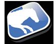 Racing Horses Classic Icon